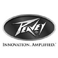 Buy Peavey @ Music Box
